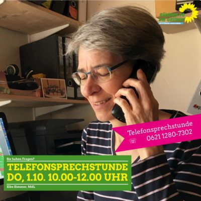 Telefonsprechstunde mit Elke Zimmer MdL